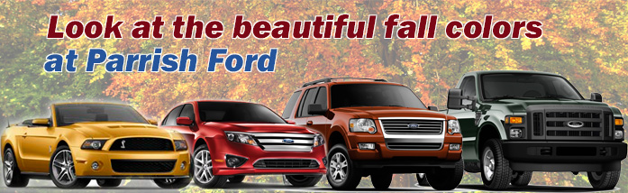 Fall Banner for Parrish Ford